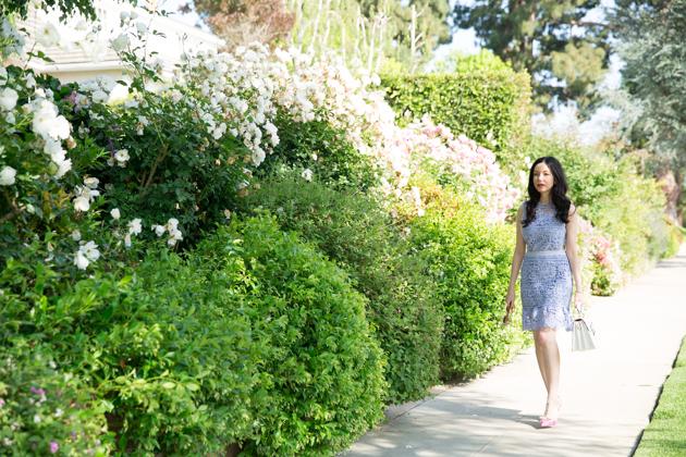 Lilac Shein Dress