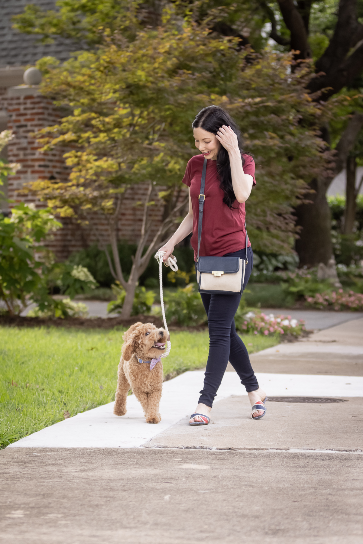 Mott & Bow Jeans and Tee Shirt, Tommy Hilfiger Crossbody Bag, J. Crew Sandals, Italic Cateye Sunglasses, Mini Goldendoodle puppy, Foggy Dog Bowtie, Preppy Style, Dallas Fashion Blogger | Mott and Bow Jeans by popular Dallas fashion blog, Pretty Little Shoppers: image of a woman wearing a crimson t-shirt, Mott and Bow Jeans, blue and red strap slide sandals, and black and tan crossbody bag while walking her doodle breed dog outside.